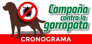 Campaña Garrapata