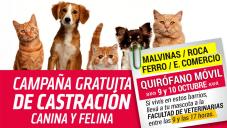 CAMPAÑA DE CASTRACIÓN GRATUITA - B° MALVINAS / ROCA / FERRO / EMPL. COMERCIO