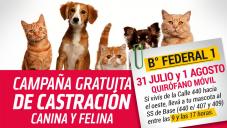 CAMPAÑA DE CASTRACIÓN GRATUITA - B° FEDERAL 1