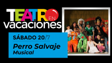 Perro Salvaje - Musical