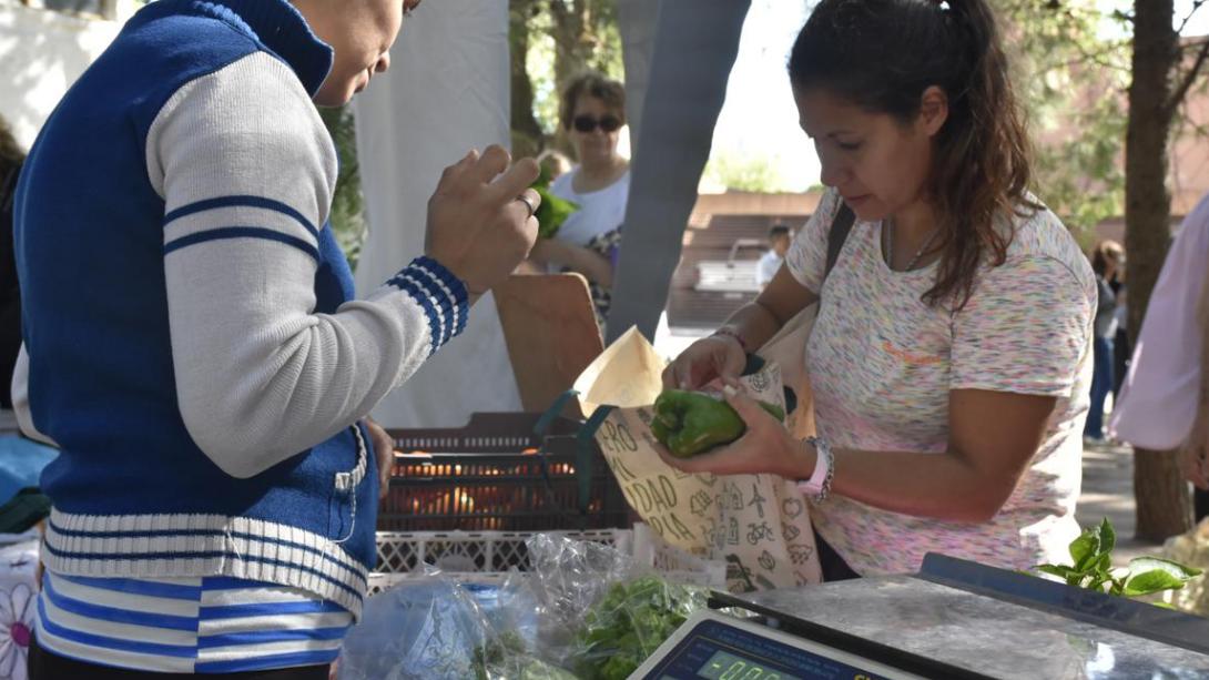 Nuevo miércoles de Feria Hortícola y Florícola en la Delegación ministerial