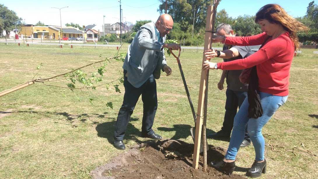Plantaron árboles por la Semana del Prematuro