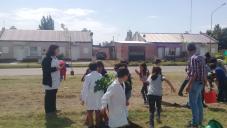 En el marco del programa Presupuesto Participativo: Alumnos de la Escuela N° 257 plantaron árboles