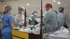 Con una amplia participación, finalizó la campaña de castración en la Facultad de Ciencias Veterinarias