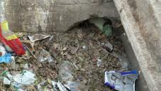 El municipio efectuó la limpieza de nuevos canales y alcantarillas