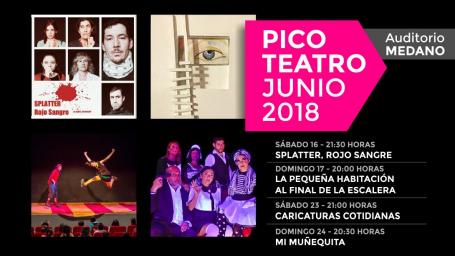"""""""Pico Teatro"""": Ciclo con cuatro obras locales"""