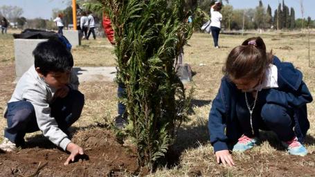 Plantaron árboles en un nuevo espacioverde de barrio Sur