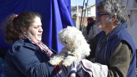 Castración de mascotas: Comenzó a funcionar el Quirófano Móvil en el Barrio Federal