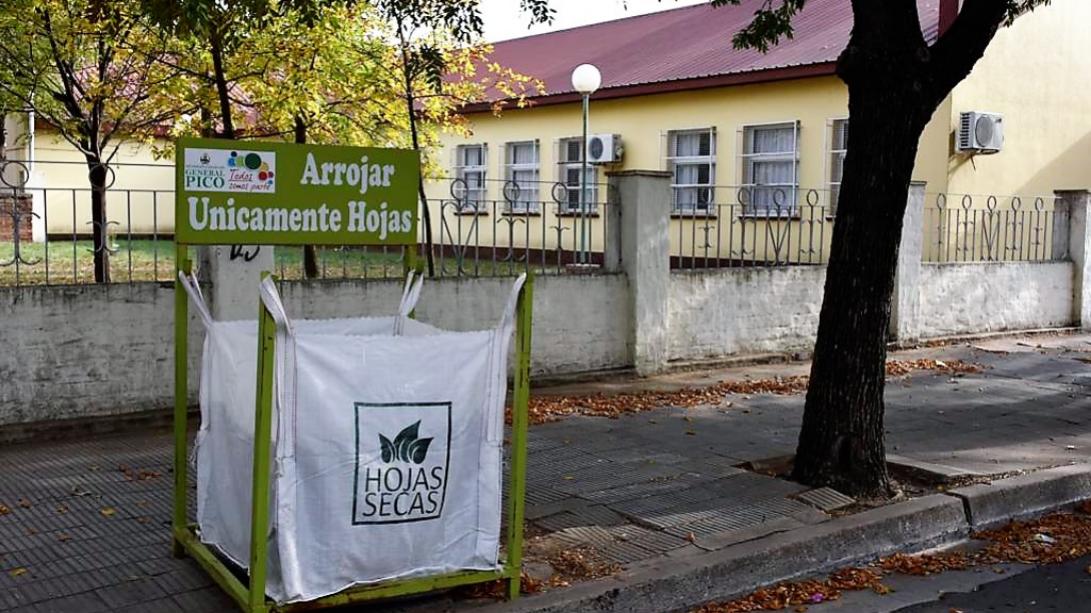 Colocan bolsones para arrojar hojas secas en instituciones educativas