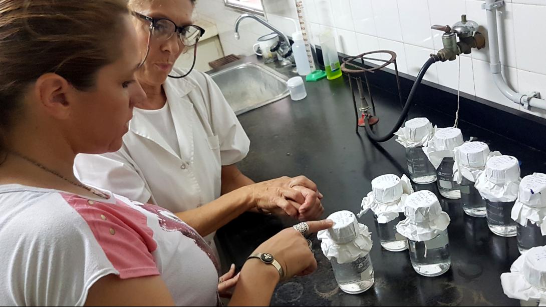 El Municipio realiza tareas de desinfección en instituciones educativas